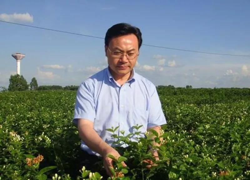中国工程院院士刘仲华:如果你是这类人,一定要多喝黑茶!