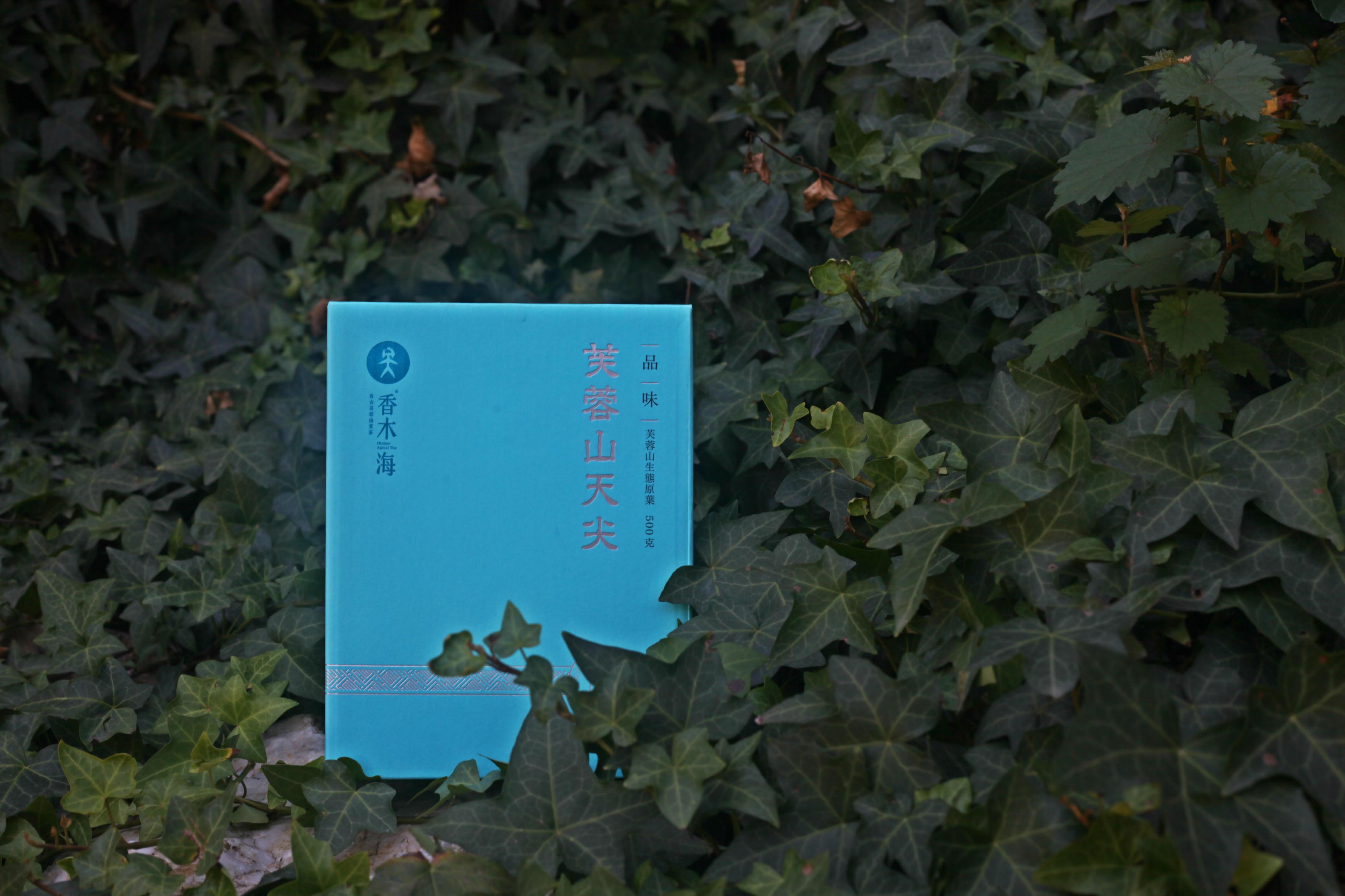 安化黑茶储存条件及影响因素[厂家分析]