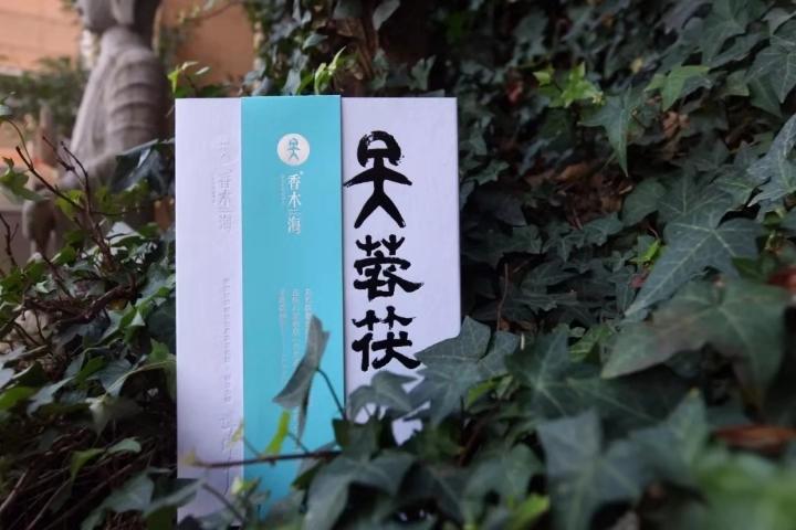 春节喝什么茶好,安化黑茶更好的选择